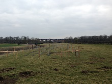 160px Seven Arches Farm Tree Planting March 2016