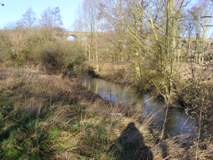 River Colne at Chappel
